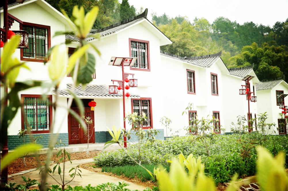 枇杷村新貌